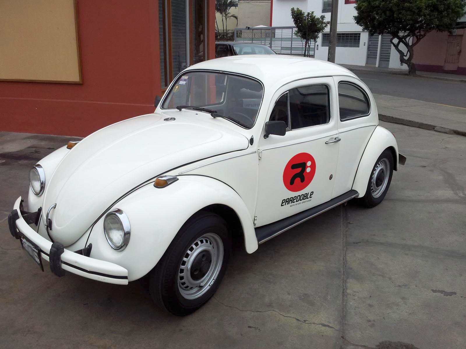 escarabajo-erredoble-1