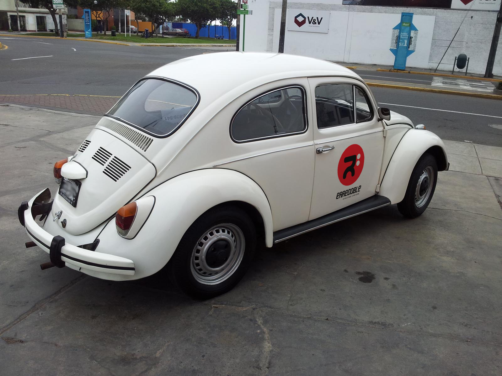 escarabajo-erredoble-2